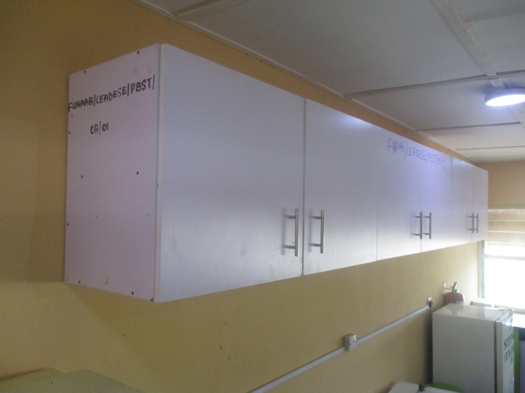 Wall Cabinets at the CEADESE PBST Laboratory (side view)