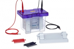 Electrophoretic Unit