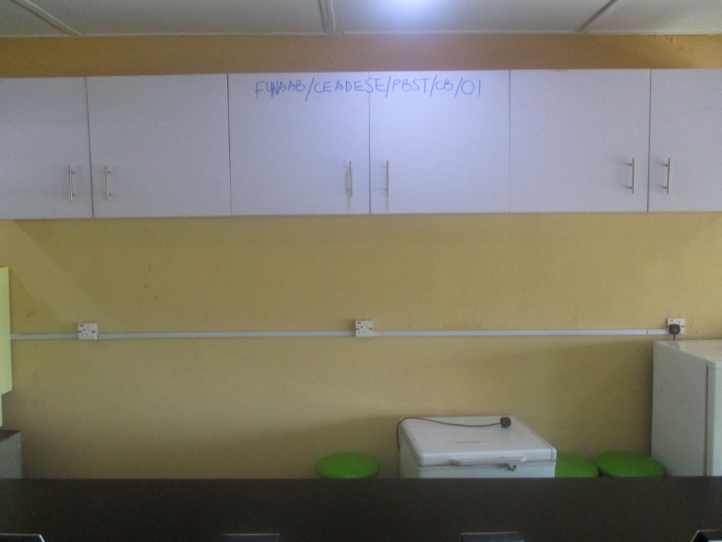 Wall Cabinets at the CEADESE PBST Laboratory (front view)