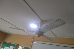Ceiling fan at the PBST Laboratory