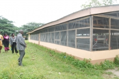 CEADESE Broilers House (Back view)