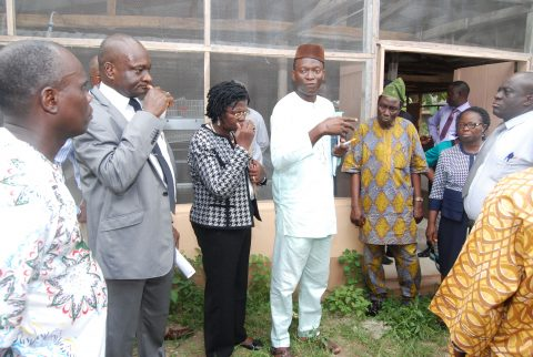 Commissioning and handing-over of CEADESE Poultry House
